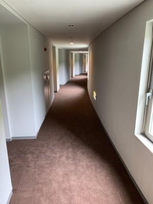 7F廊下絨毯