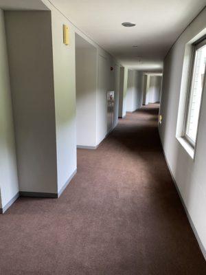 廊下絨毯張替え