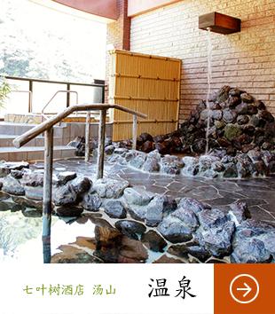 オテル・ド・マロニエ 下呂温泉 温泉